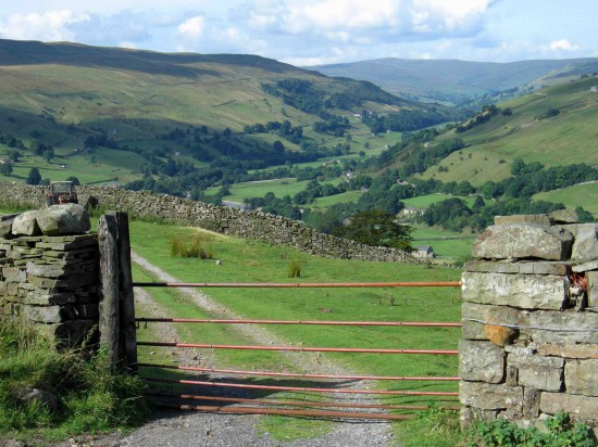 Looking-up-the-dale