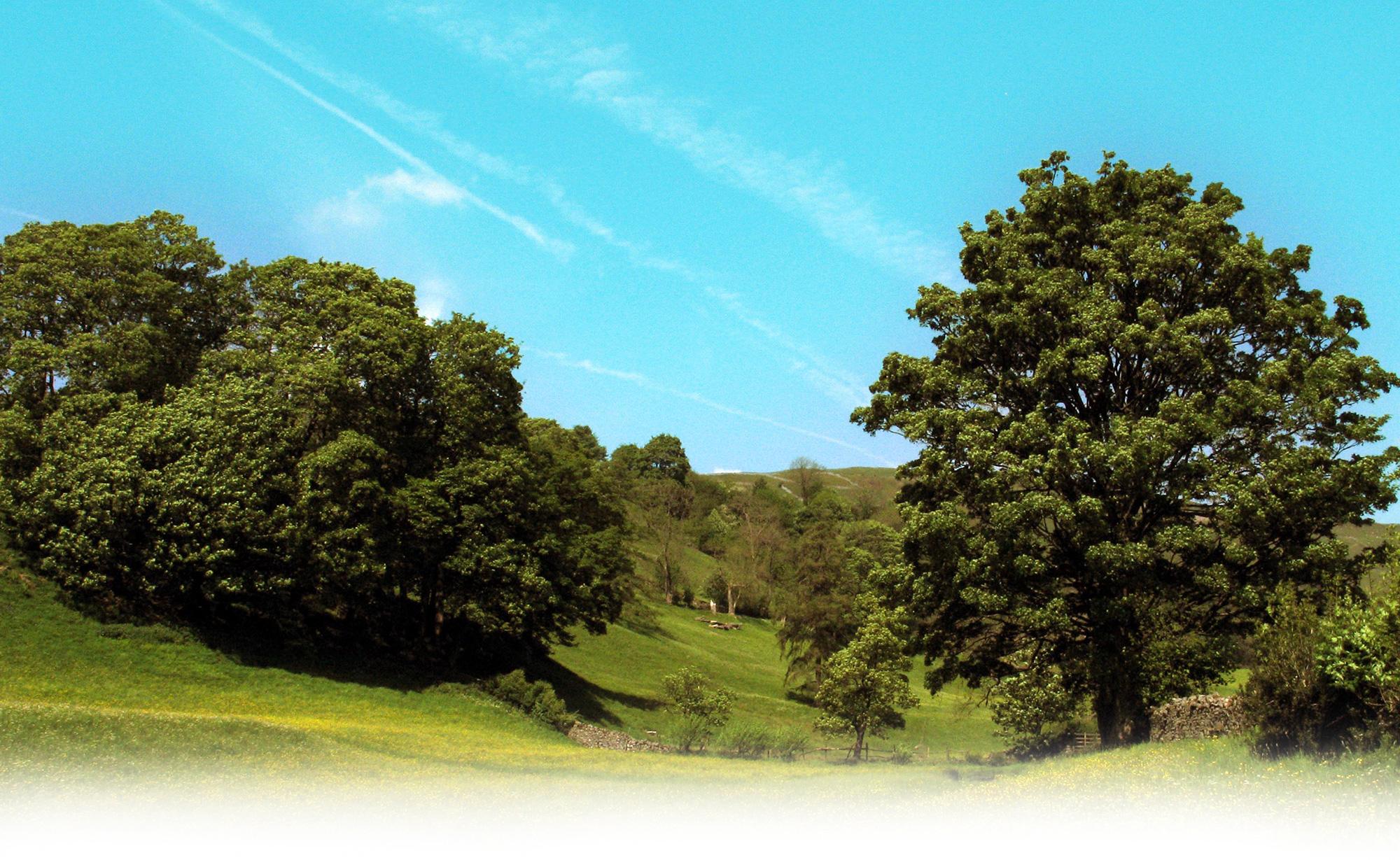 muker-meadows2